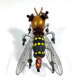 syrphid3